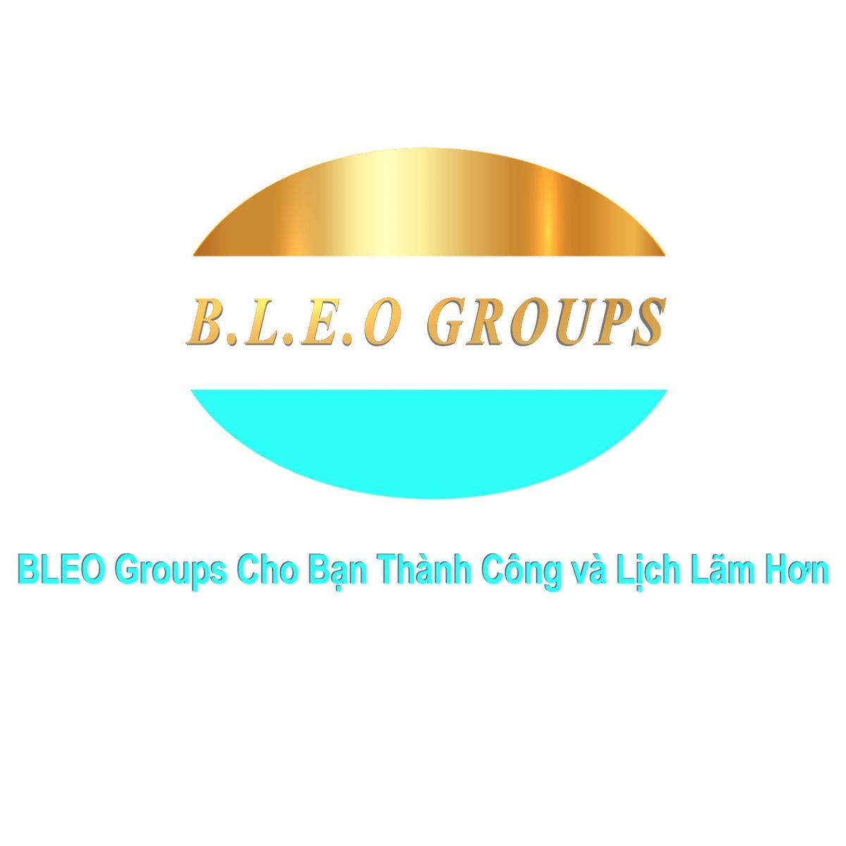 Logo Bleogroups